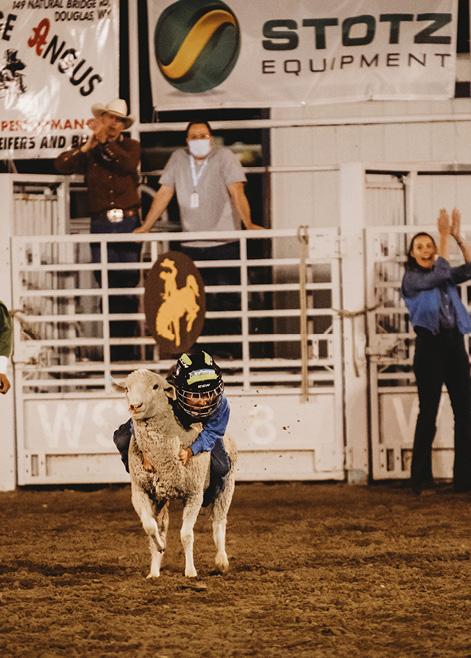 Wyoming State Fair Mutton Bustin
