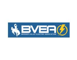 BVEA Logo